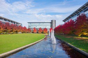 英国华威大学